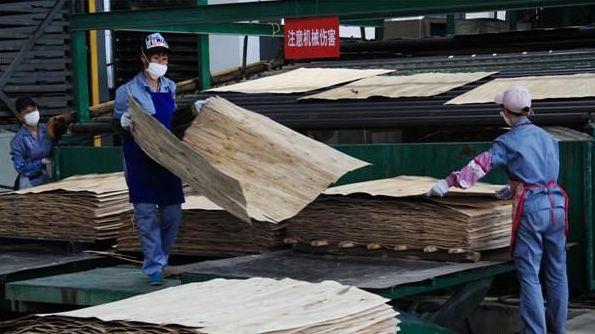 宝顺安防毒面具为人造板生产工人提供健康呼吸
